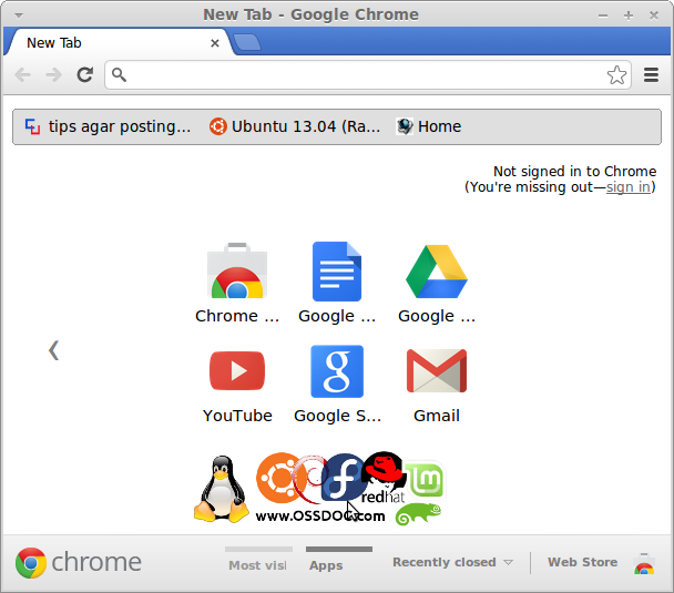 Google Chrome Installation on Ubuntu 13.04