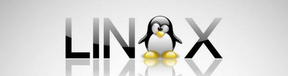 Linux-Web-Hosting-in-Mumbai